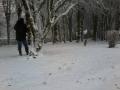 hiver2016-0001