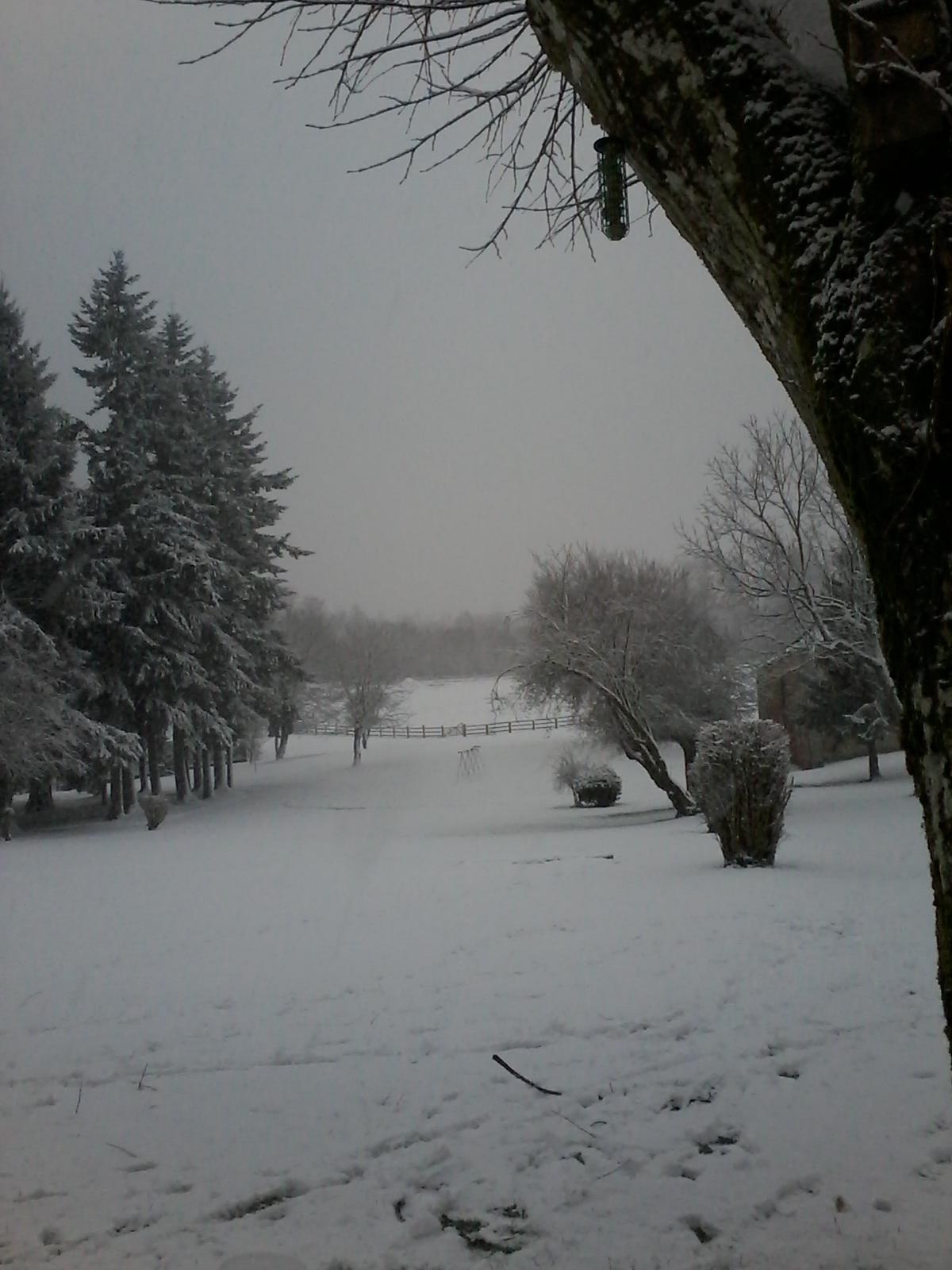hiver2016-0006