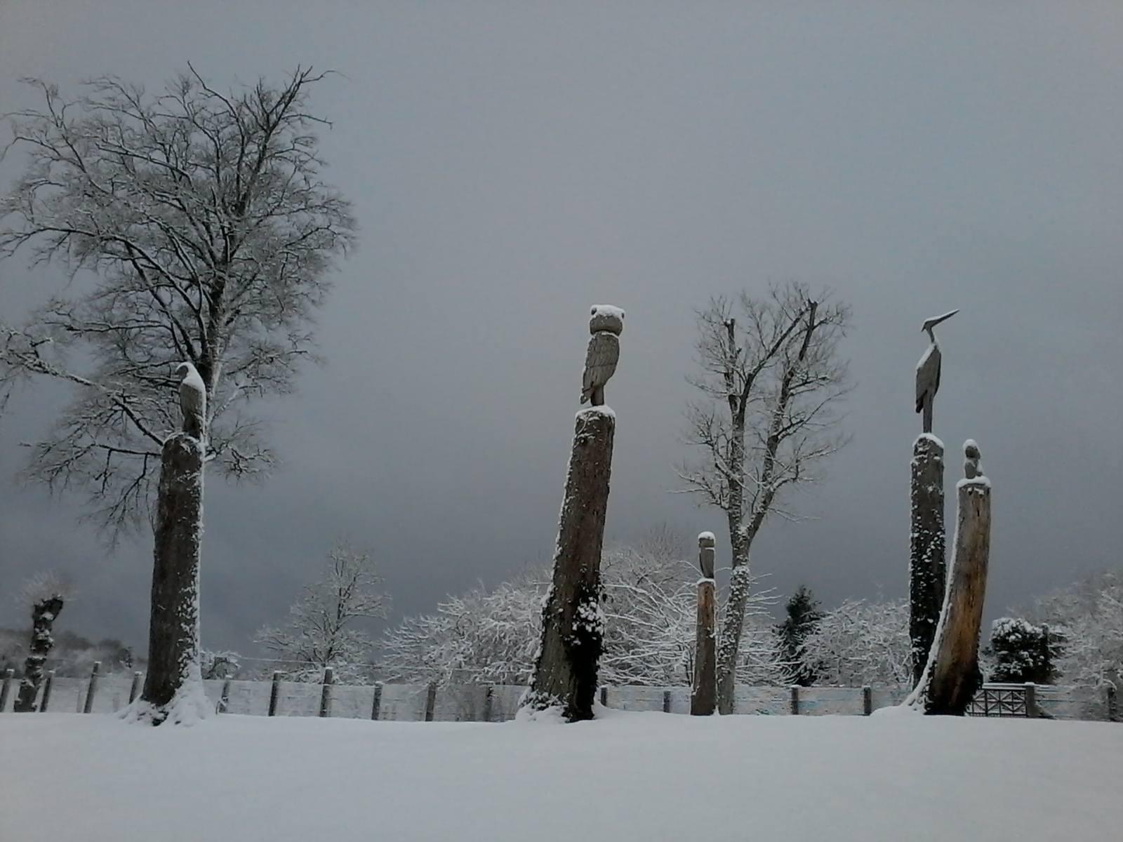 hiver2016-0016