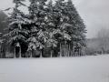 hiver2016-0014