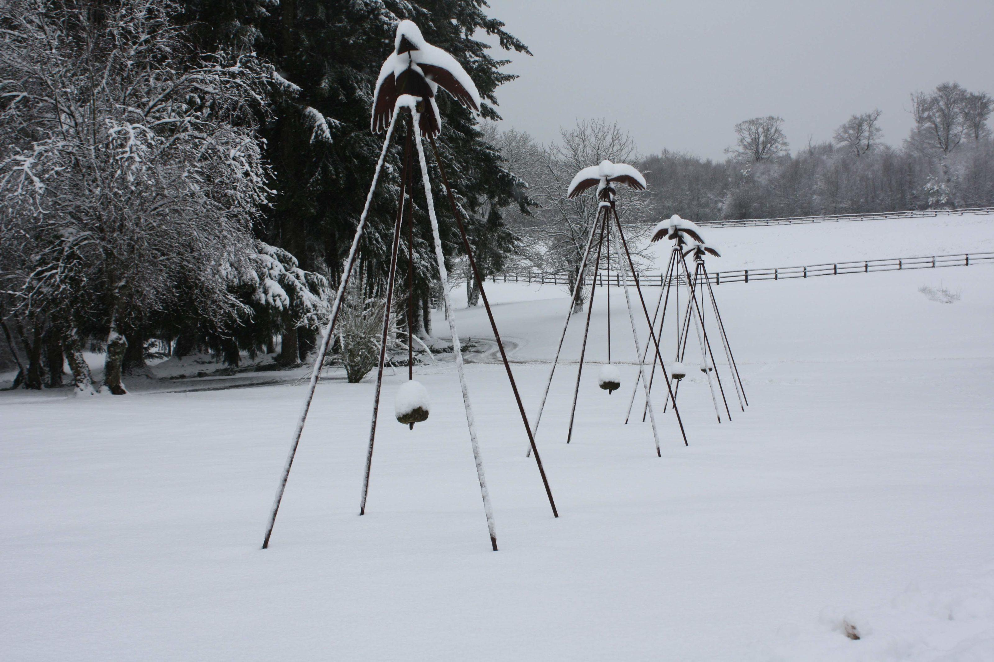 oiseaux neige